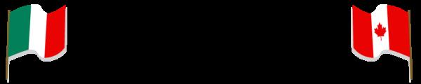 Ludolinguistica